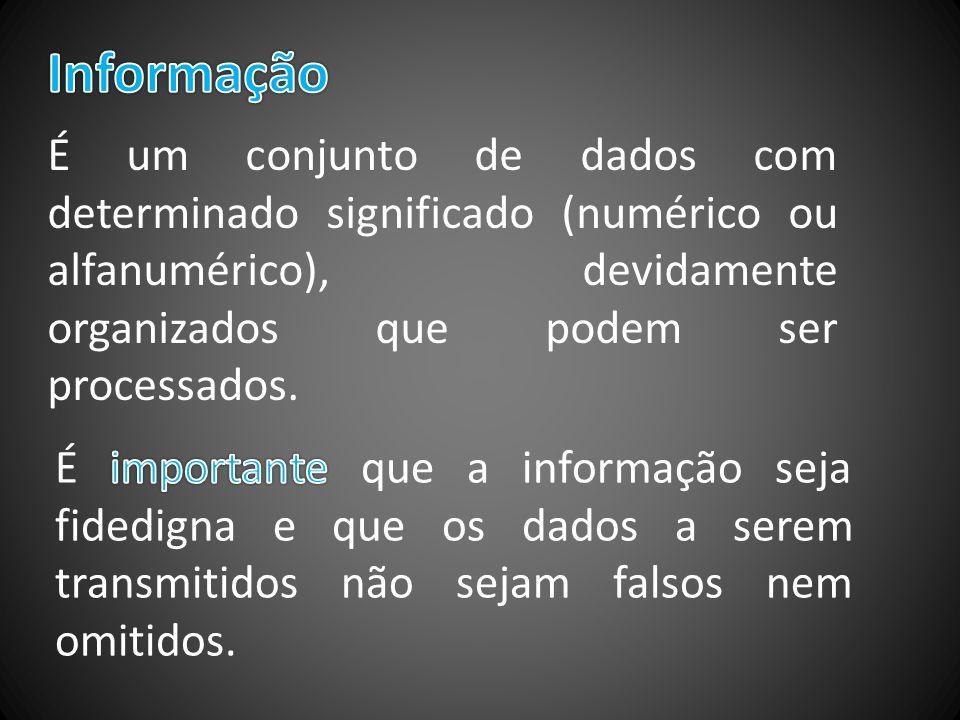 É um conjunto de dados com determinado significado (numérico ou alfanumérico), devidamente organizados que podem ser processados.