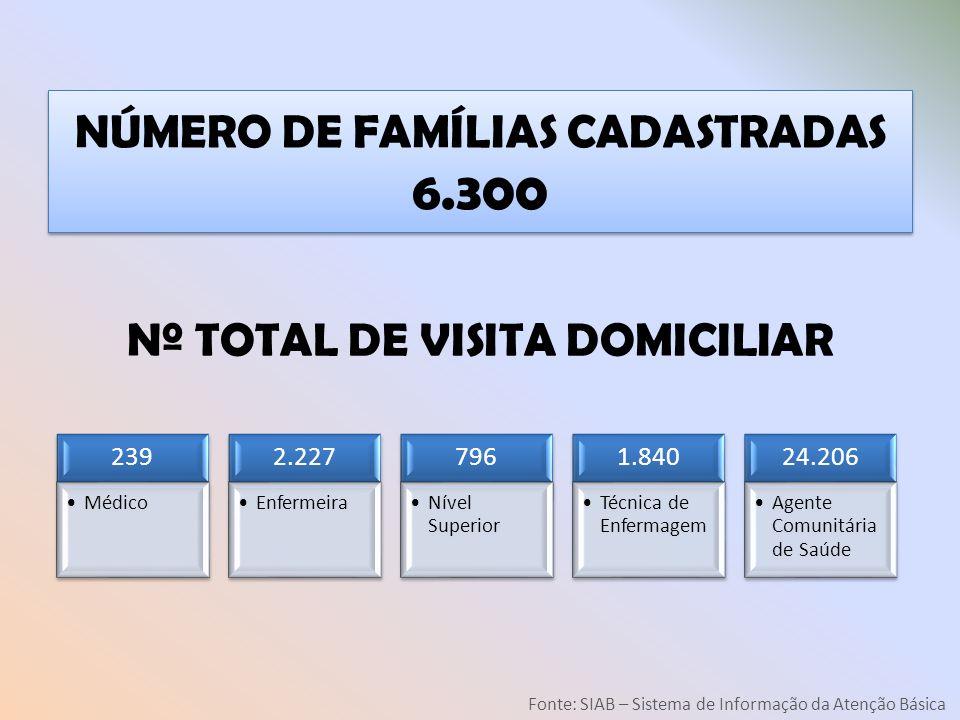 Nº TOTAL DE VISITA DOMICILIAR 239 Médico 2.227 Enfermeira 796 Nível Superior 1.840 Técnica de Enfermagem 24.206 Agente Comunitária de Saúde Fonte: SIA