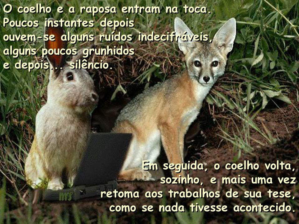 A raposa ficou indignada: -Ora!!! Isso é ridículo!!! Nós é que somos os predadores dos coelhos! -Ora!!! Isso é ridículo!!! Nós é que somos os predador