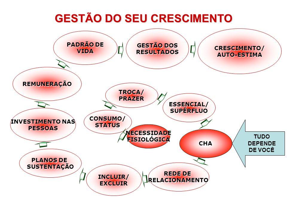 NECESSIDADEFISIOLÓGICA CONSUMO/STATUS TROCA/PRAZER ESSENCIAL/SUPÉRFLUO CHA REDE DE RELACIONAMENTO INCLUIR/EXCLUIR INVESTIMENTO NAS PESSOAS REMUNERAÇÃO
