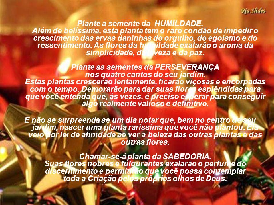 Neste Natal plante um jardim no seu coração. Não se preocupe em fertilizar pois a terra do coração é boa e naturalmente dadivosa. O mais importante é