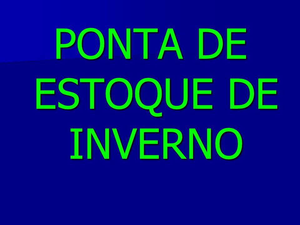 PONTA DE ESTOQUE DE INVERNO