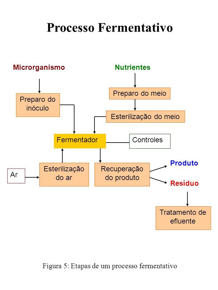 Processo Fermentativo Fermentador Microrganismo Preparo do inóculo Nutrientes Preparo do meio Esterilização do meio Controles Esterilização do ar Recu