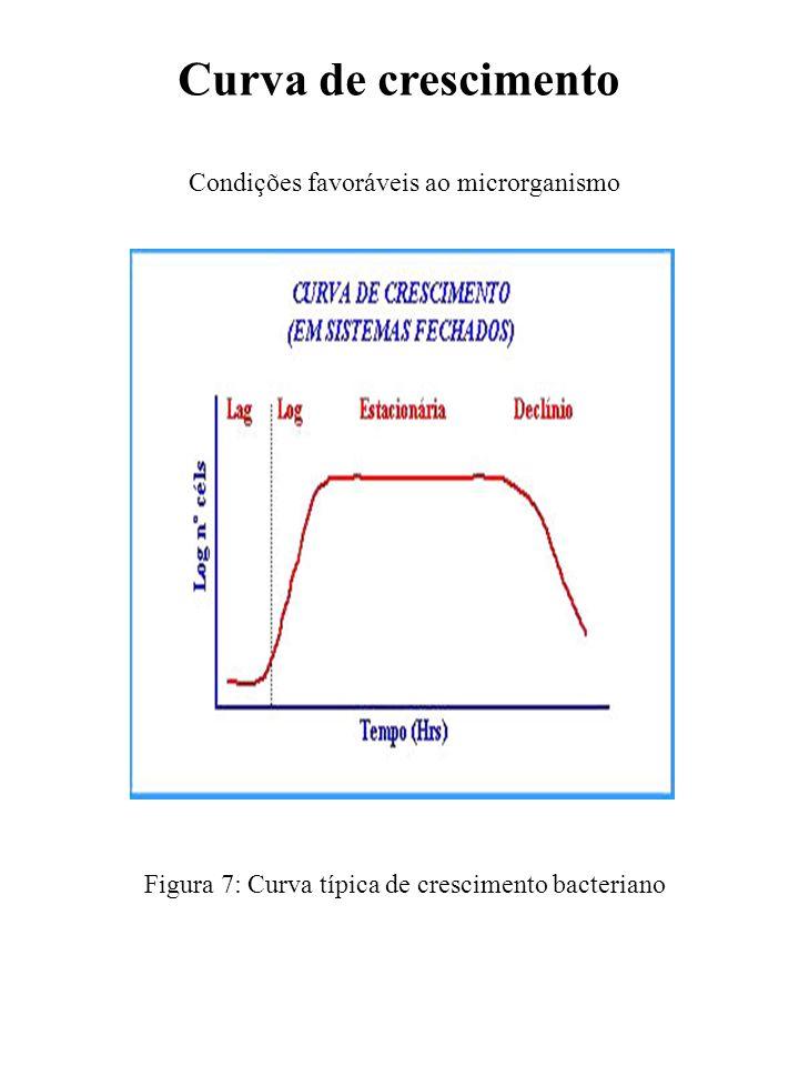 Curva de crescimento Condições favoráveis ao microrganismo Figura 7: Curva típica de crescimento bacteriano