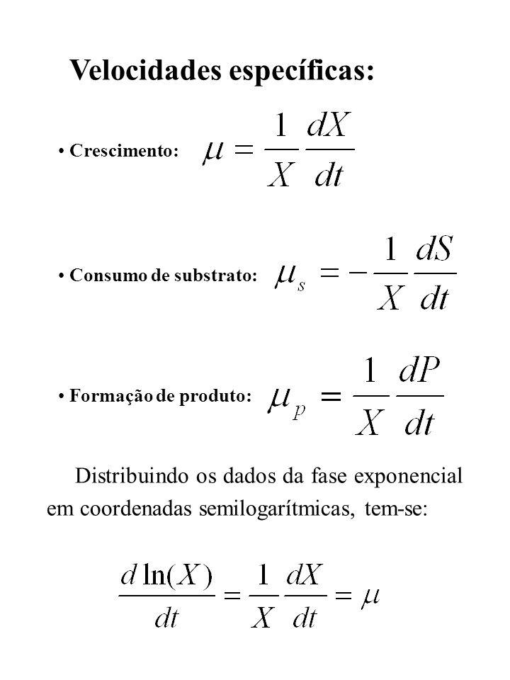 Velocidades específicas: Crescimento: Consumo de substrato: Formação de produto: Distribuindo os dados da fase exponencial em coordenadas semilogarítm