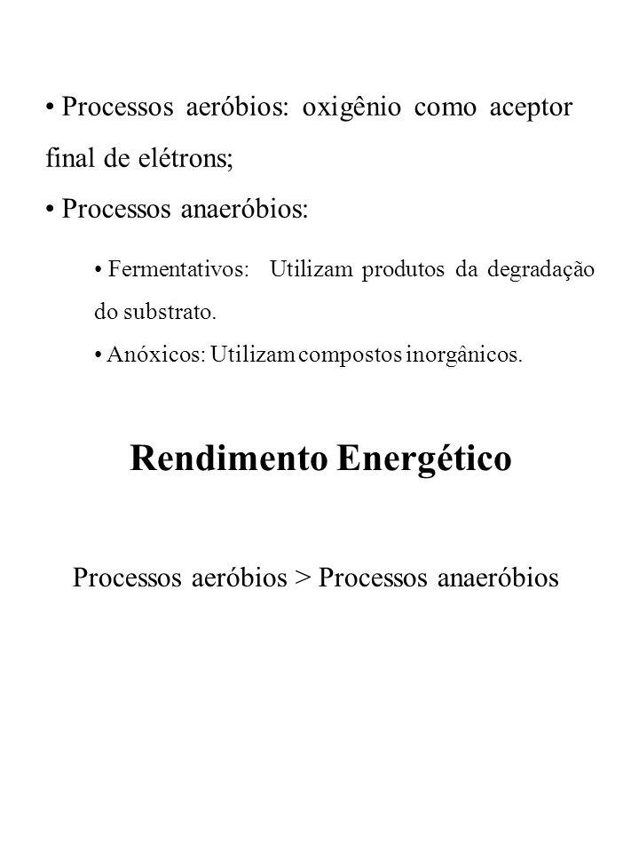 Processos aeróbios: oxigênio como aceptor final de elétrons; Processos anaeróbios: Fermentativos: Utilizam produtos da degradação do substrato. Anóxic
