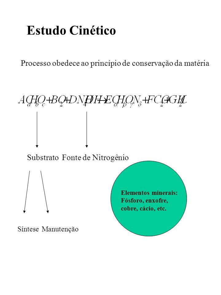 Estudo Cinético Processo obedece ao princípio de conservação da matéria Substrato SínteseManutenção Fonte de Nitrogênio Elementos minerais: Fósforo, e