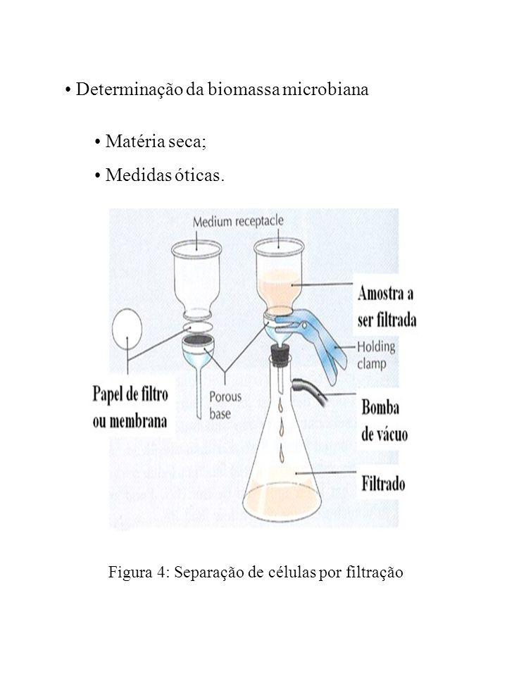 Métodos Indiretos Constituintes celulares (ATP, DNA, NADH); Dosagem de elementos do meio de cultura (substrato, consumo de O 2, propriedades reológicas do meio de cultura, entre outros.