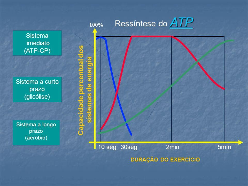 10 seg30seg2min5min ATP Ressíntese do ATP 100% Capacidade percentual dos sistemas de energia DURAÇÃO DO EXERCÍCIO Sistema a curto prazo (glicólise) Si