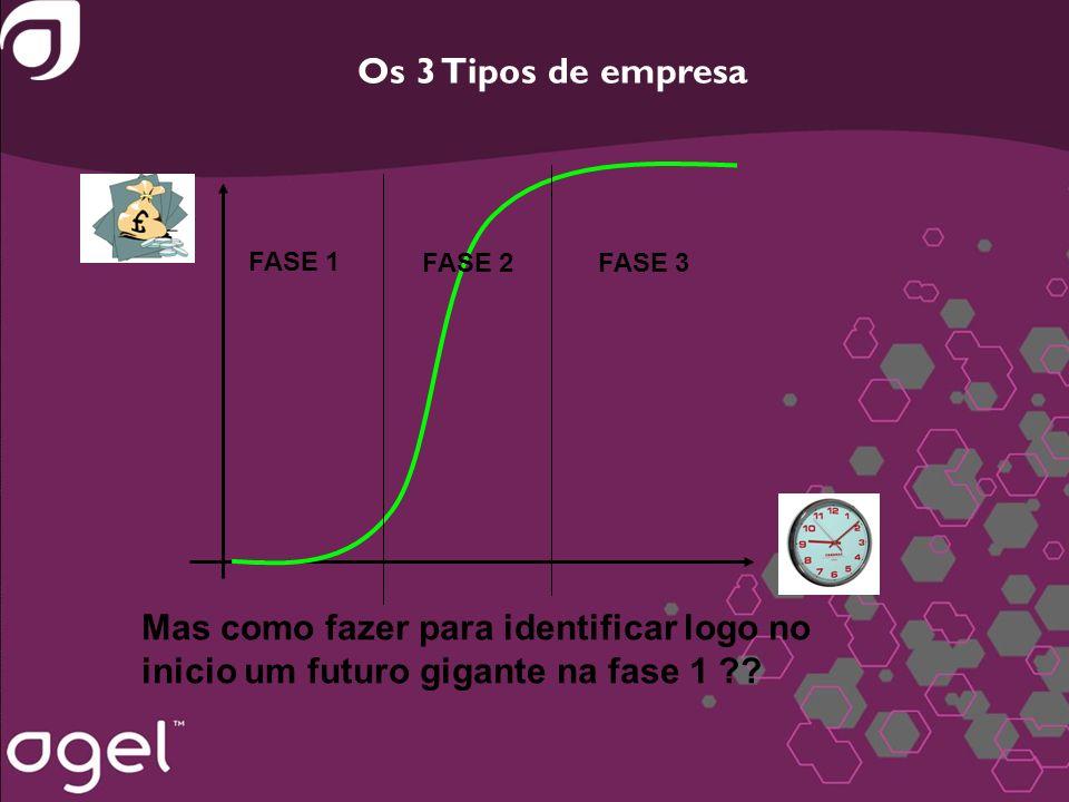 Os 3 Tipos de empresa FASE 1 FASE 2FASE 3 Mas como fazer para identificar logo no inicio um futuro gigante na fase 1 ??