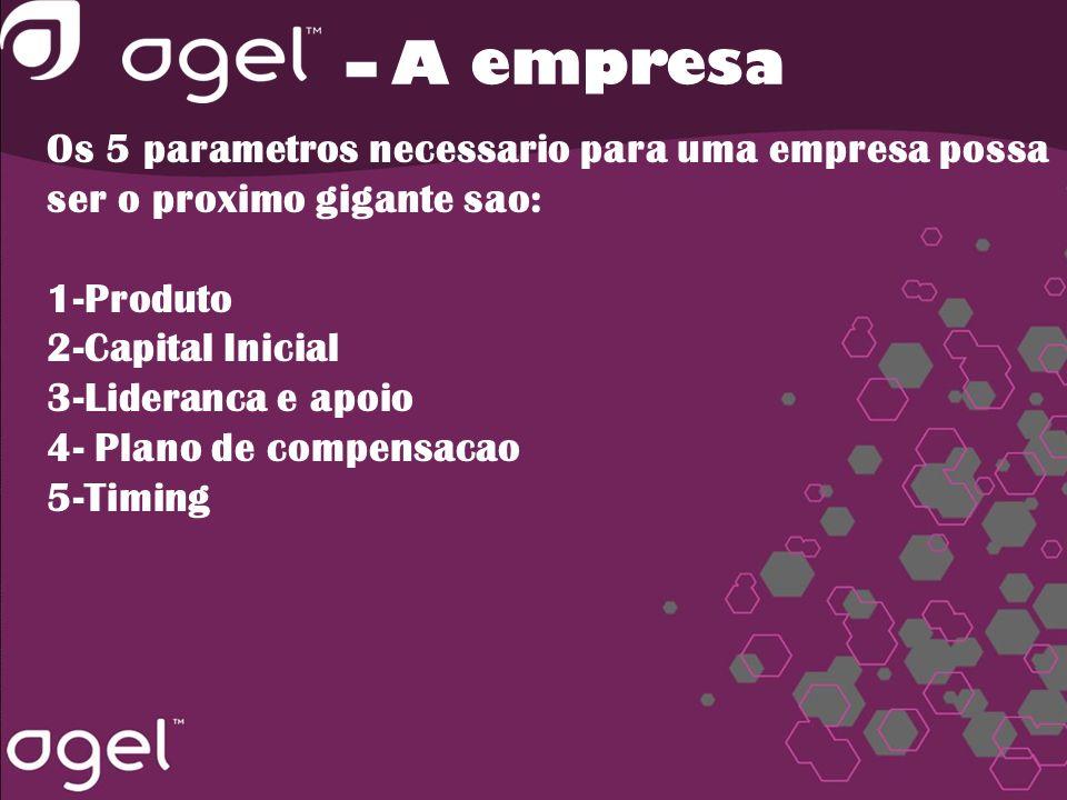 Os 5 parametros necessario para uma empresa possa ser o proximo gigante sao: 1-Produto 2-Capital Inicial 3-Lideranca e apoio 4- Plano de compensacao 5