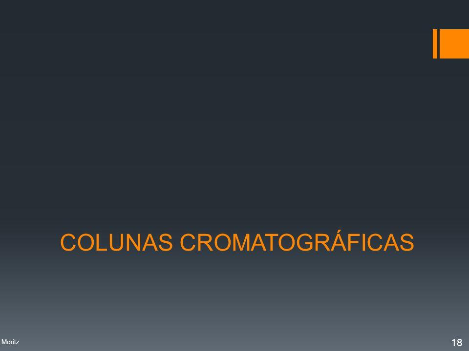 COLUNAS CROMATOGRÁFICAS Profa. Denise Moritz 18