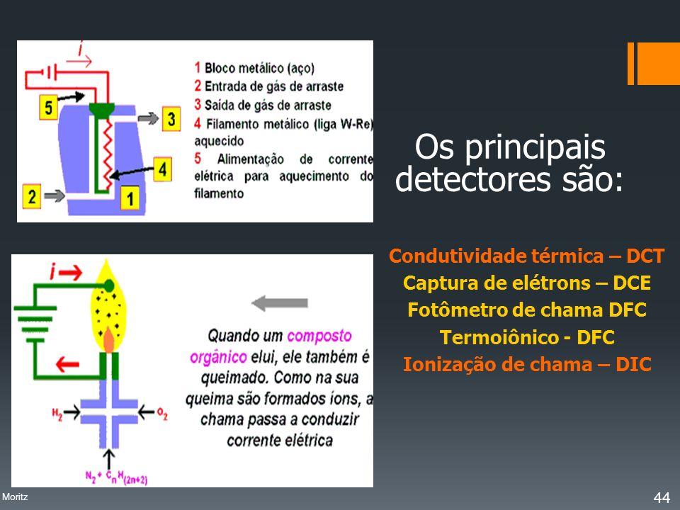 Os principais detectores são: Condutividade térmica – DCT Captura de elétrons – DCE Fotômetro de chama DFC Termoiônico - DFC Ionização de chama – DIC