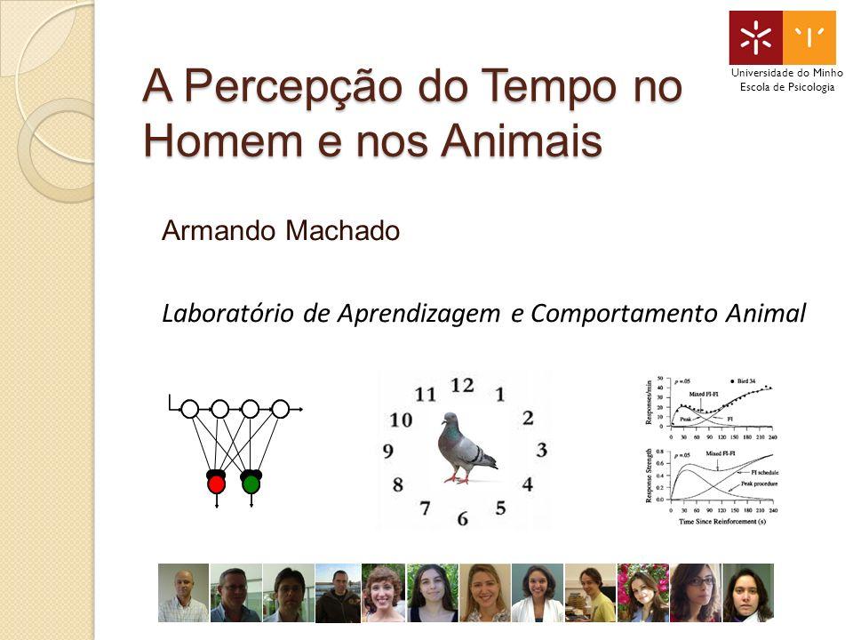 A Percepção do Tempo no Homem e nos Animais Armando Machado Laboratório de Aprendizagem e Comportamento Animal Universidade do Minho Escola de Psicologia