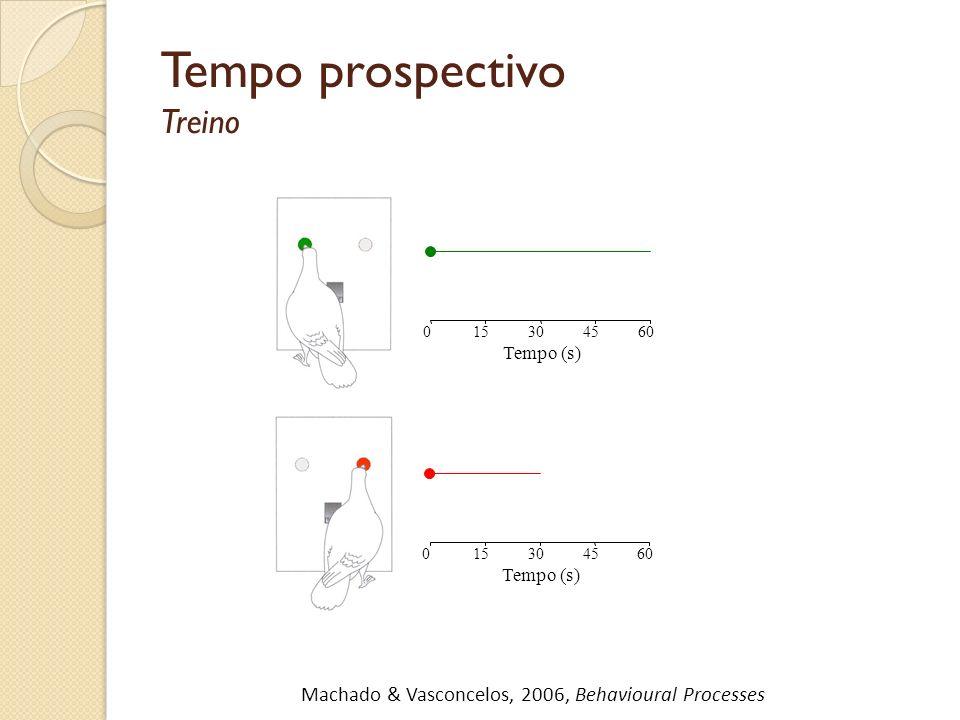 Tempo prospectivo Treino Tempo (s) 015304560 Comida Tempo (s) 015304560 Comida Machado & Vasconcelos, 2006, Behavioural Processes Vieira de Castro & M