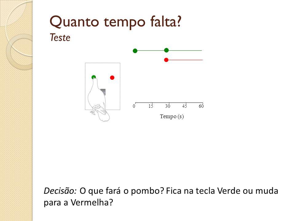 Tempo prospectivo Treino Tempo (s) 015304560 Tempo (s) 015304560 Machado & Vasconcelos, 2006, Behavioural Processes