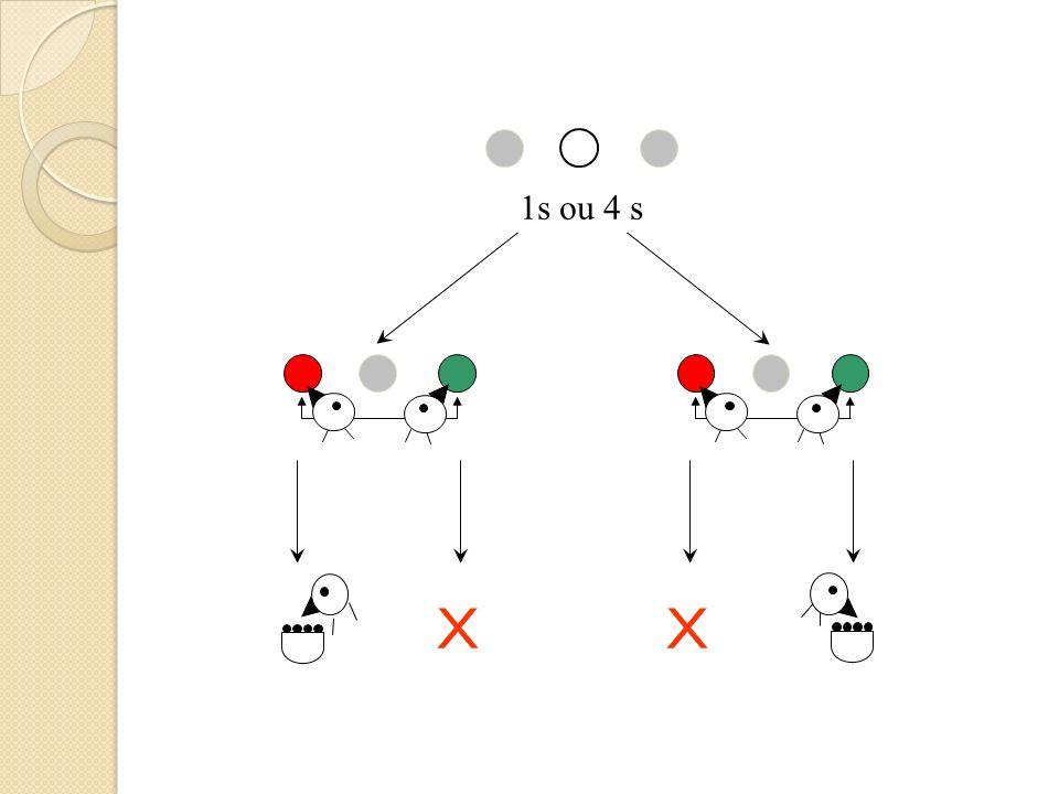 Bissecção temporal: Teste 2, 2.5, 3 1 s 4 s