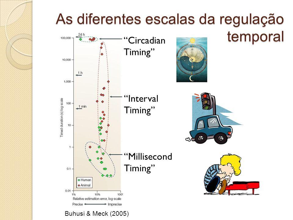 As diferentes escalas da regulação temporal Buhusi & Meck (2005) Circadian Timing Millisecond Timing Interval Timing