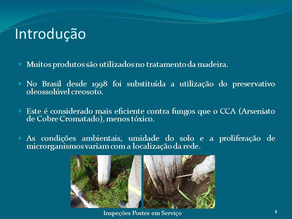4 Introdução Muitos produtos são utilizados no tratamento da madeira. No Brasil desde 1998 foi substituída a utilização do preservativo oleossolúvel c