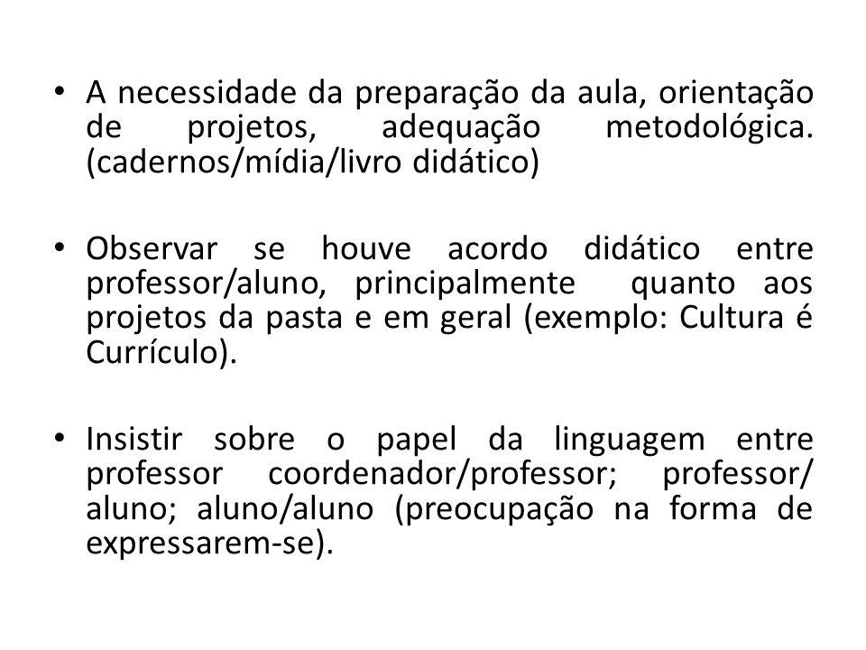 A necessidade da preparação da aula, orientação de projetos, adequação metodológica.