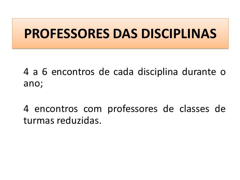 PROFESSORES DAS DISCIPLINAS 4 a 6 encontros de cada disciplina durante o ano; 4 encontros com professores de classes de turmas reduzidas.