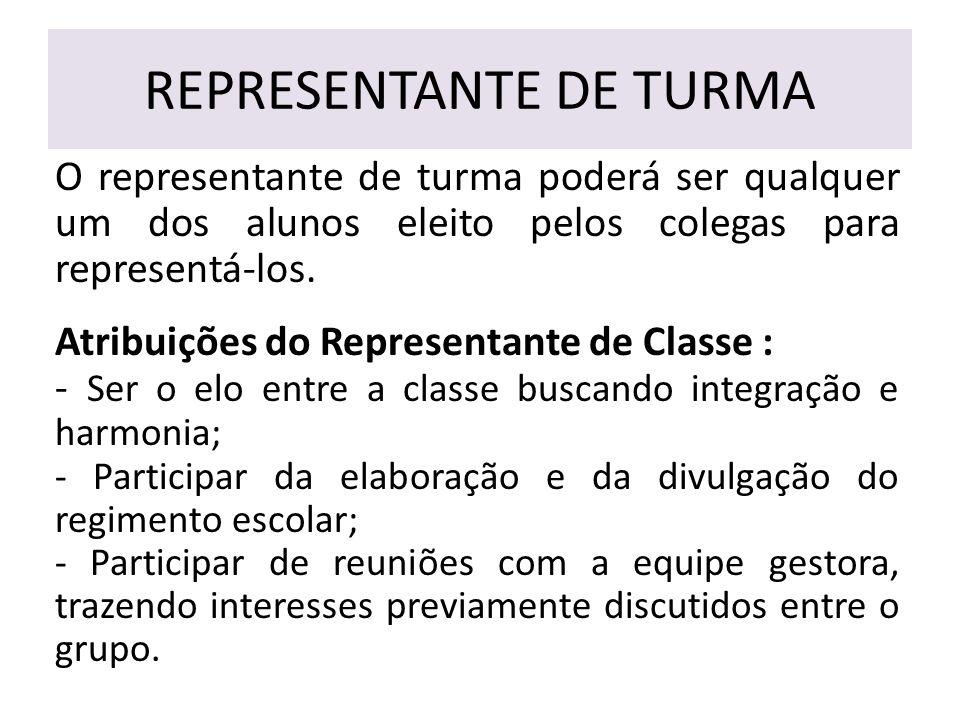 REPRESENTANTE DE TURMA O representante de turma poderá ser qualquer um dos alunos eleito pelos colegas para representá-los.