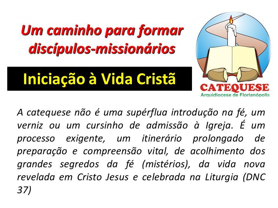 Um caminho para formar discípulos-missionários Iniciação à Vida Cristã A catequese não é uma supérflua introdução na fé, um verniz ou um cursinho de admissão à Igreja.