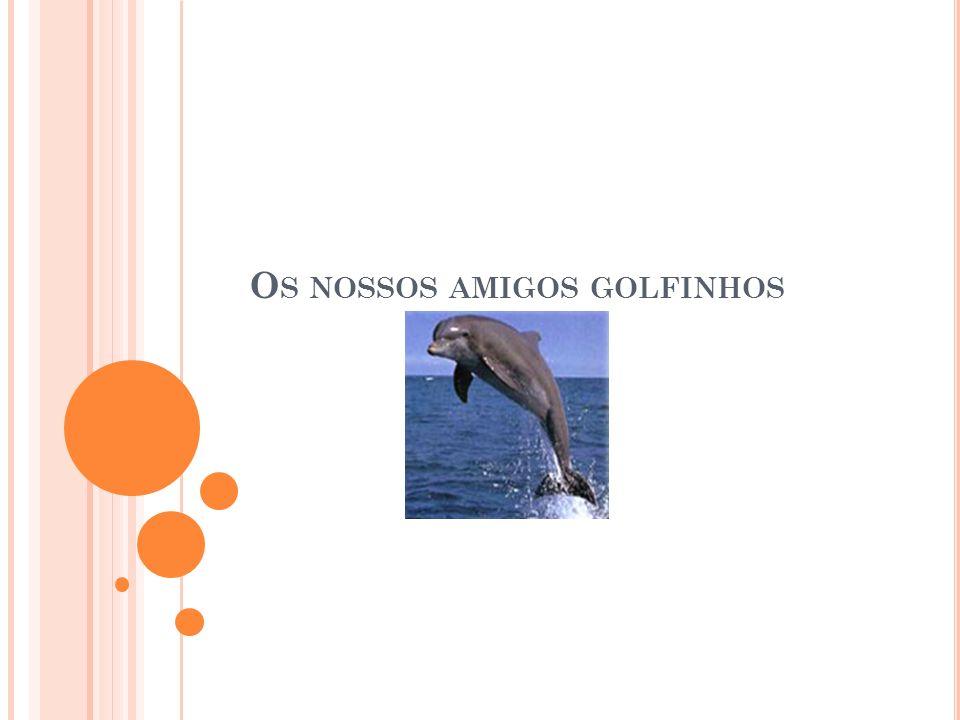 O S NOSSOS AMIGOS GOLFINHOS