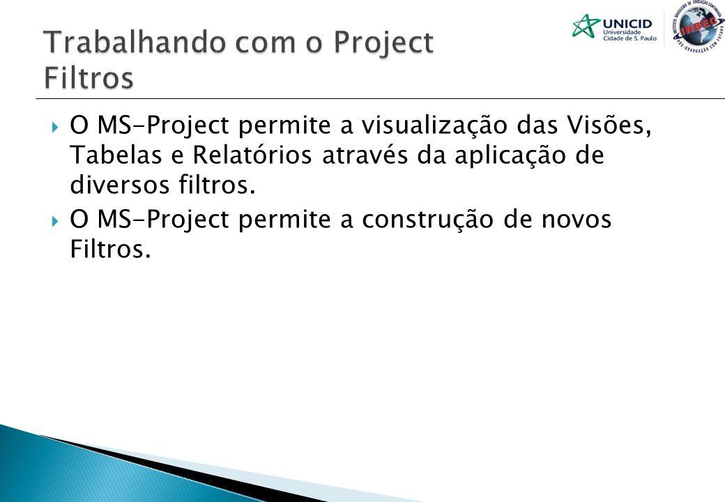 O MS-Project permite a visualização das Visões, Tabelas e Relatórios através da aplicação de diversos filtros. O MS-Project permite a construção de no