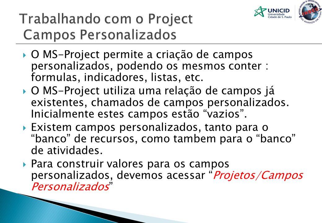 O MS-Project permite a criação de campos personalizados, podendo os mesmos conter : formulas, indicadores, listas, etc. O MS-Project utiliza uma relaç