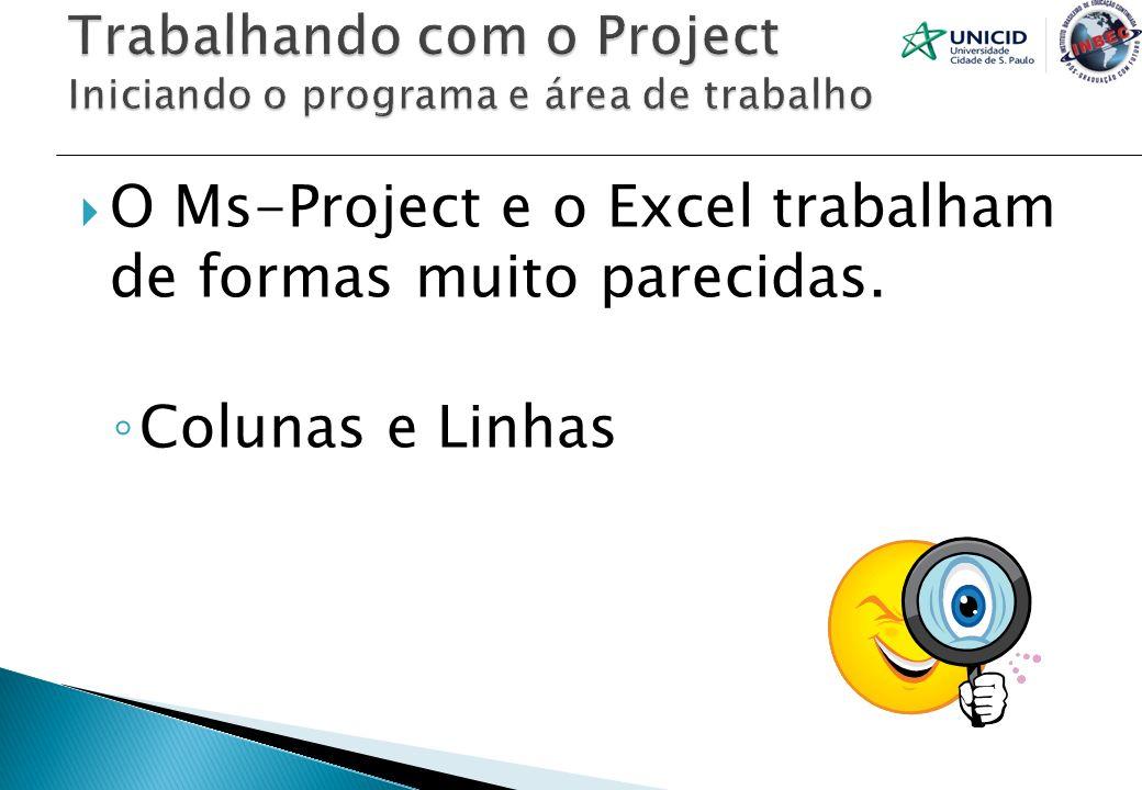 O Ms-Project e o Excel trabalham de formas muito parecidas. Colunas e Linhas