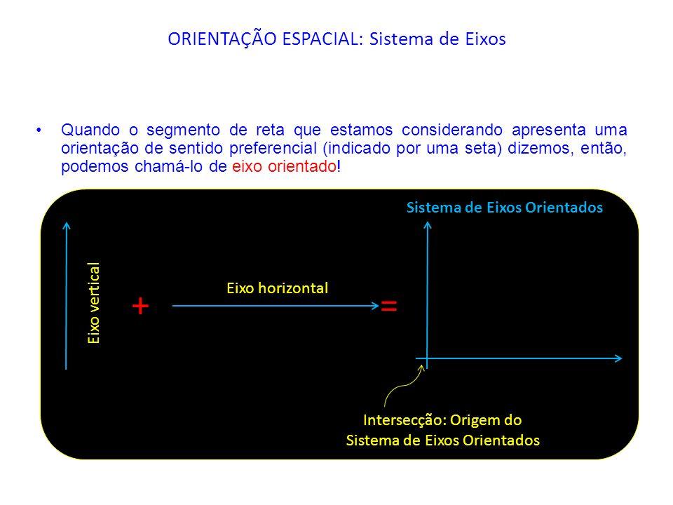 Quando o segmento de reta que estamos considerando apresenta uma orientação de sentido preferencial (indicado por uma seta) dizemos, então, podemos ch