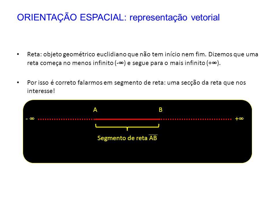 Reta: objeto geométrico euclidiano que não tem início nem fim. Dizemos que uma reta começa no menos infinito (- ) e segue para o mais infinito (+ ). P