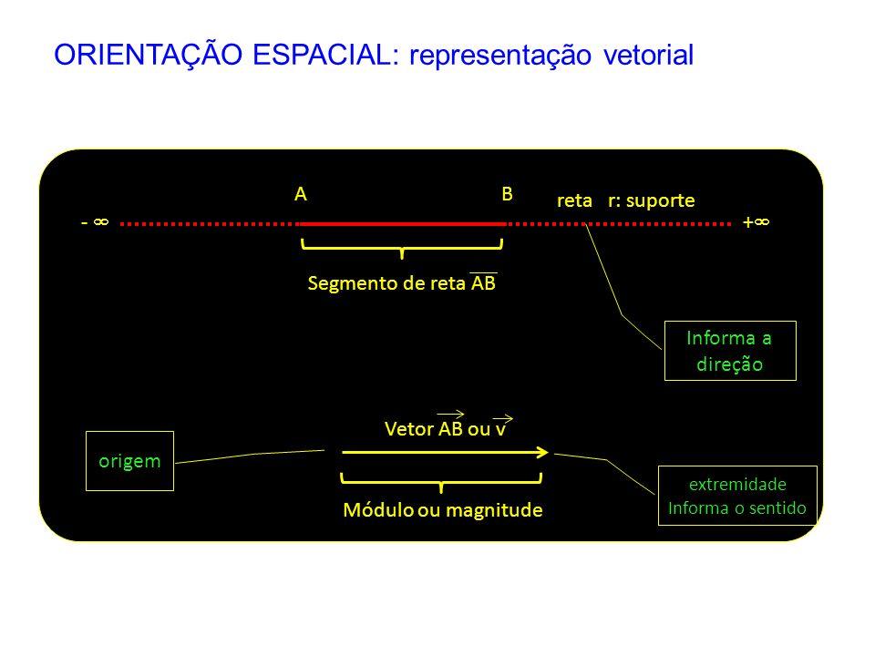 Segmento de reta AB reta r: suporte AB + - Vetor AB ou v origem extremidade Informa o sentido Módulo ou magnitude Informa a direção