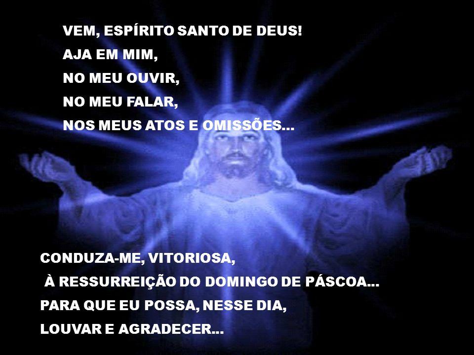VEM, ESPÍRITO SANTO DE DEUS.AJA EM MIM, NO MEU OUVIR, NO MEU FALAR, NOS MEUS ATOS E OMISSÕES...