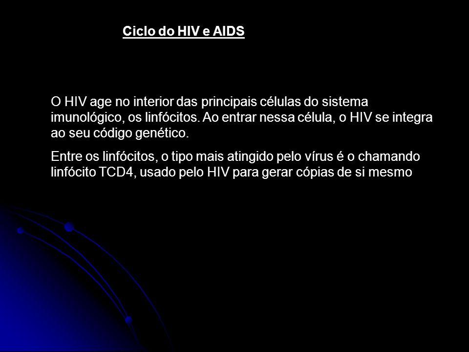 Ciclo do HIV e AIDS O HIV age no interior das principais células do sistema imunológico, os linfócitos. Ao entrar nessa célula, o HIV se integra ao se