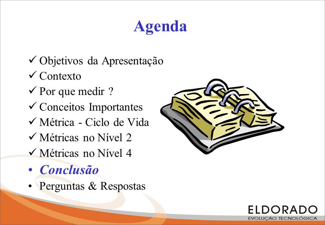 Agenda Objetivos da Apresentação Contexto Por que medir ? Conceitos Importantes Métrica - Ciclo de Vida Métricas no Nível 2 Métricas no Nível 4 Conclu