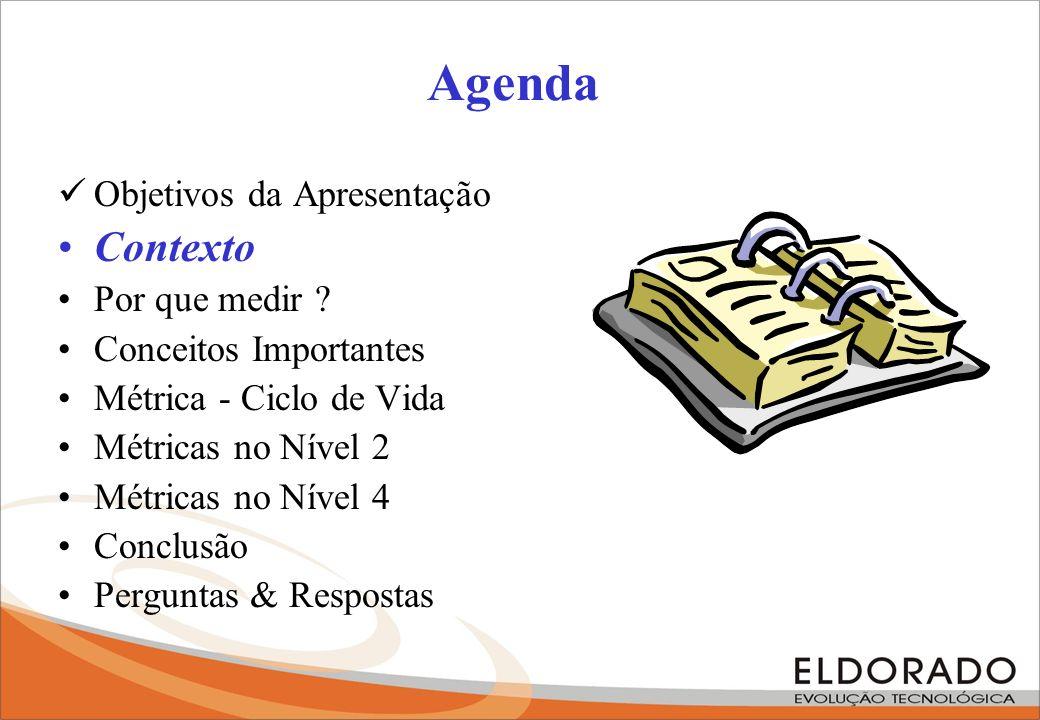 Agenda Objetivos da Apresentação Contexto Por que medir .