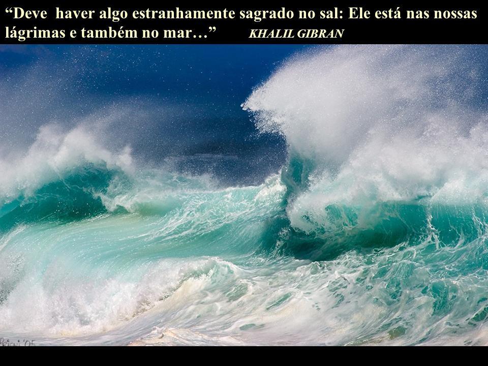 Deve haver algo estranhamente sagrado no sal: Ele está nas nossas lágrimas e também no mar… KHALIL GIBRAN