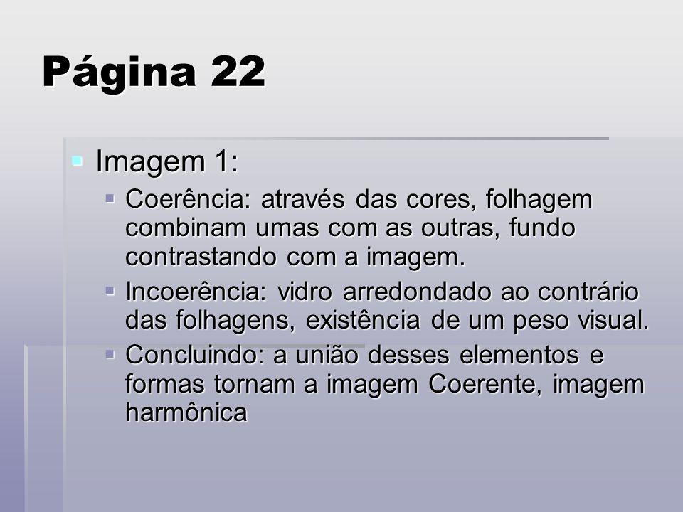 Página 22 Imagem 1: Imagem 1: Coerência: através das cores, folhagem combinam umas com as outras, fundo contrastando com a imagem. Coerência: através