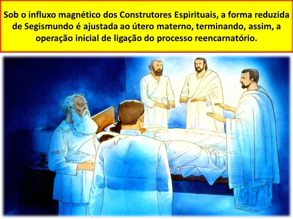 Sob o influxo magnético dos Construtores Espirituais, a forma reduzida de Segismundo é ajustada ao útero materno, terminando, assim, a operação inicia