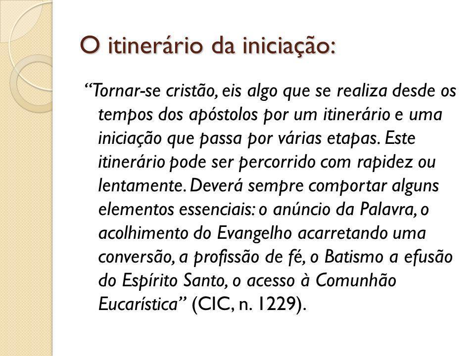 Sobre o ministério do(a) introdutor(a) alguém que o conhece [o interessado], ajuda e é testemunha de seus costumes, fé e desejo (n.