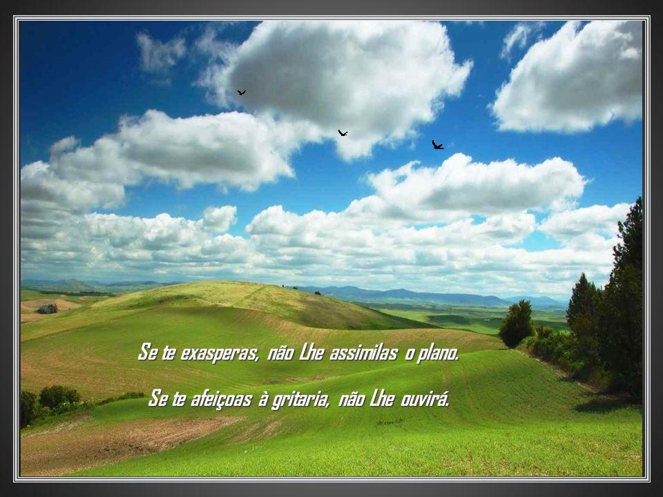 Cada dia que se levanta é convite de Deus para que Lhe atendamos à Obra divina, em nosso próprio favor.