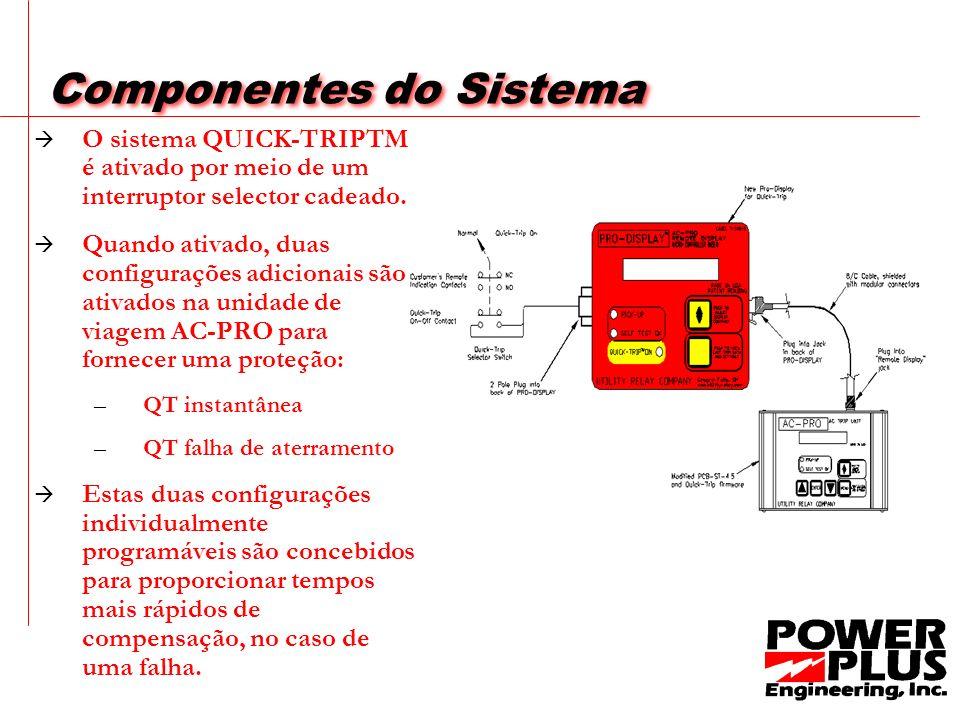 Componentes do Sistema O sistema QUICK-TRIPTM é ativado por meio de um interruptor selector cadeado.