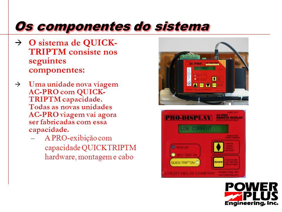 Componentes do Sistema O sistema QUICK-TRIPTM é ativado por meio de um interruptor selector cadeado. Quando ativado, duas configurações adicionais são