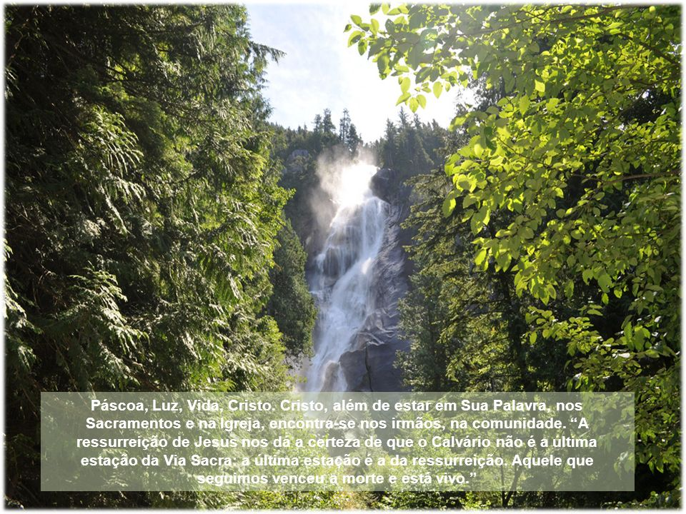 No cap. 6 da carta aos Romanos, São Paulo nos ensina que, pelo batismo, nós fomos inseridos sacramentalmente no mistério pascal de Cristo. O batismo c