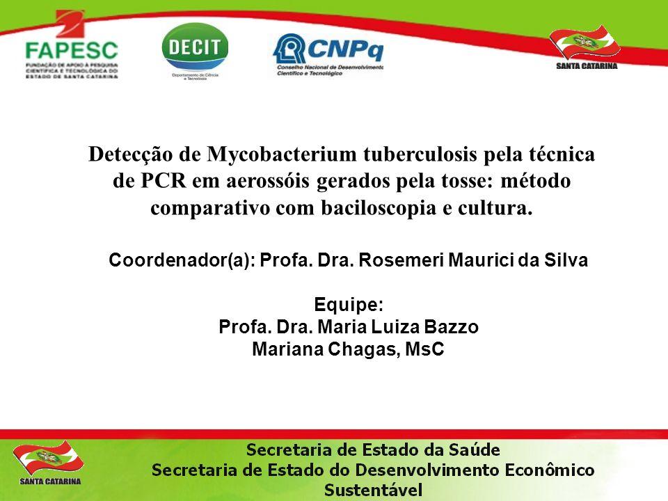 Coordenador(a): Profa.Dra. Rosemeri Maurici da Silva Equipe: Profa.