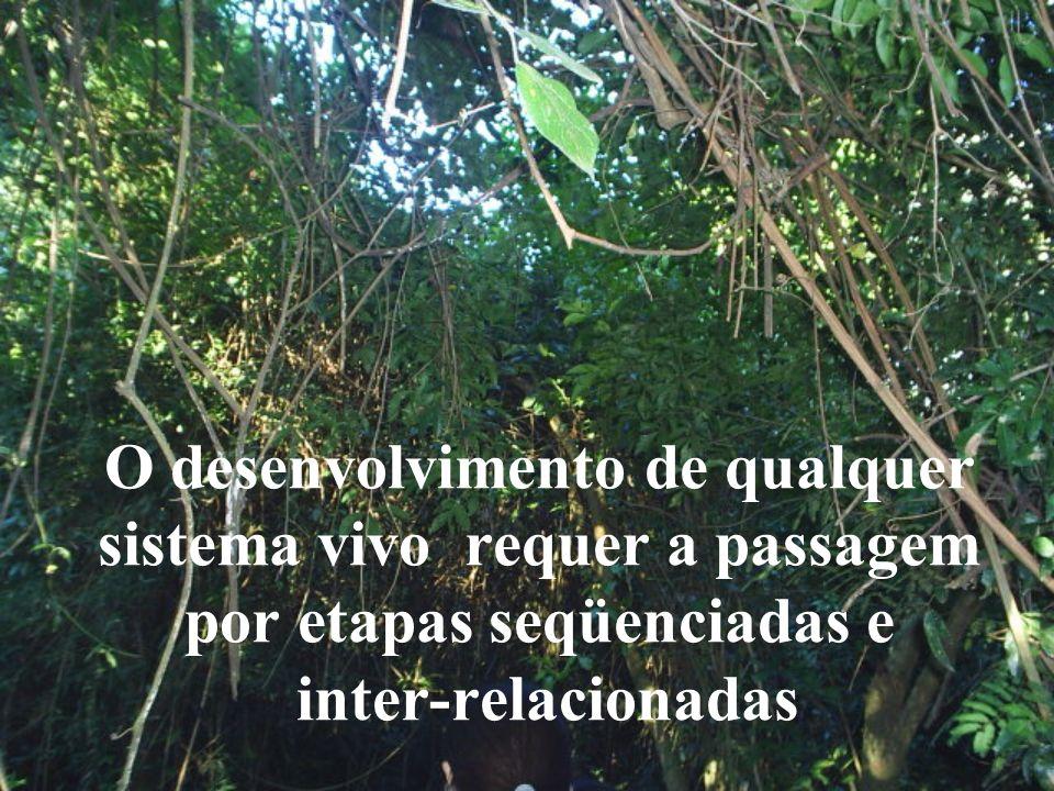 Levar á refletir sobre o papel Único de cada ser na teia de relações que sustenta a vida