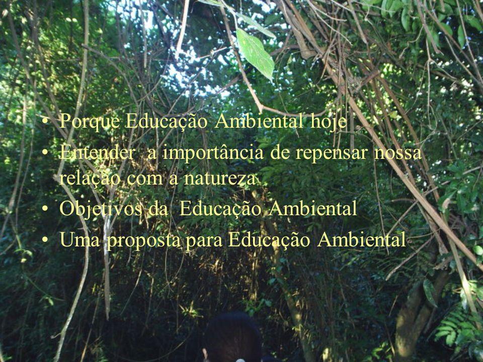 Porque Educação Ambiental hoje Entender a importância de repensar nossa relação com a natureza Objetivos da Educação Ambiental Uma proposta para Educação Ambiental