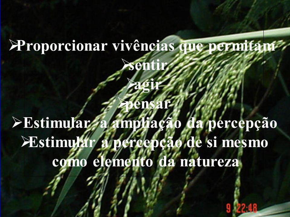 Estimular a receptividade Estimular a ampliação da percepção Estimular a percepção de si mesmo como elemento da natureza